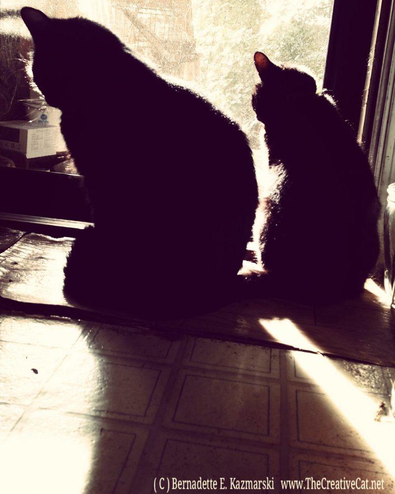 Sunbathers.