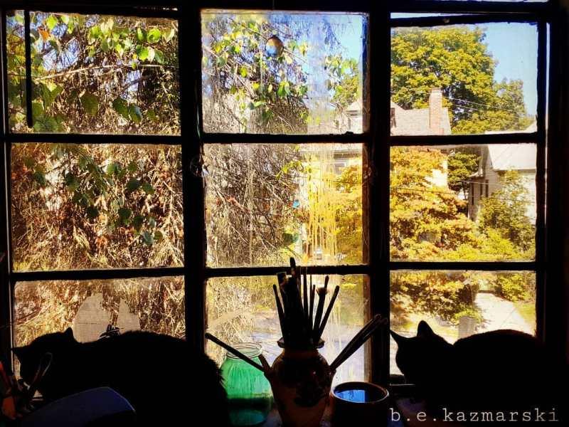 cat silhouettes on the windowsill