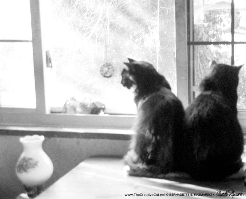 two at the window.