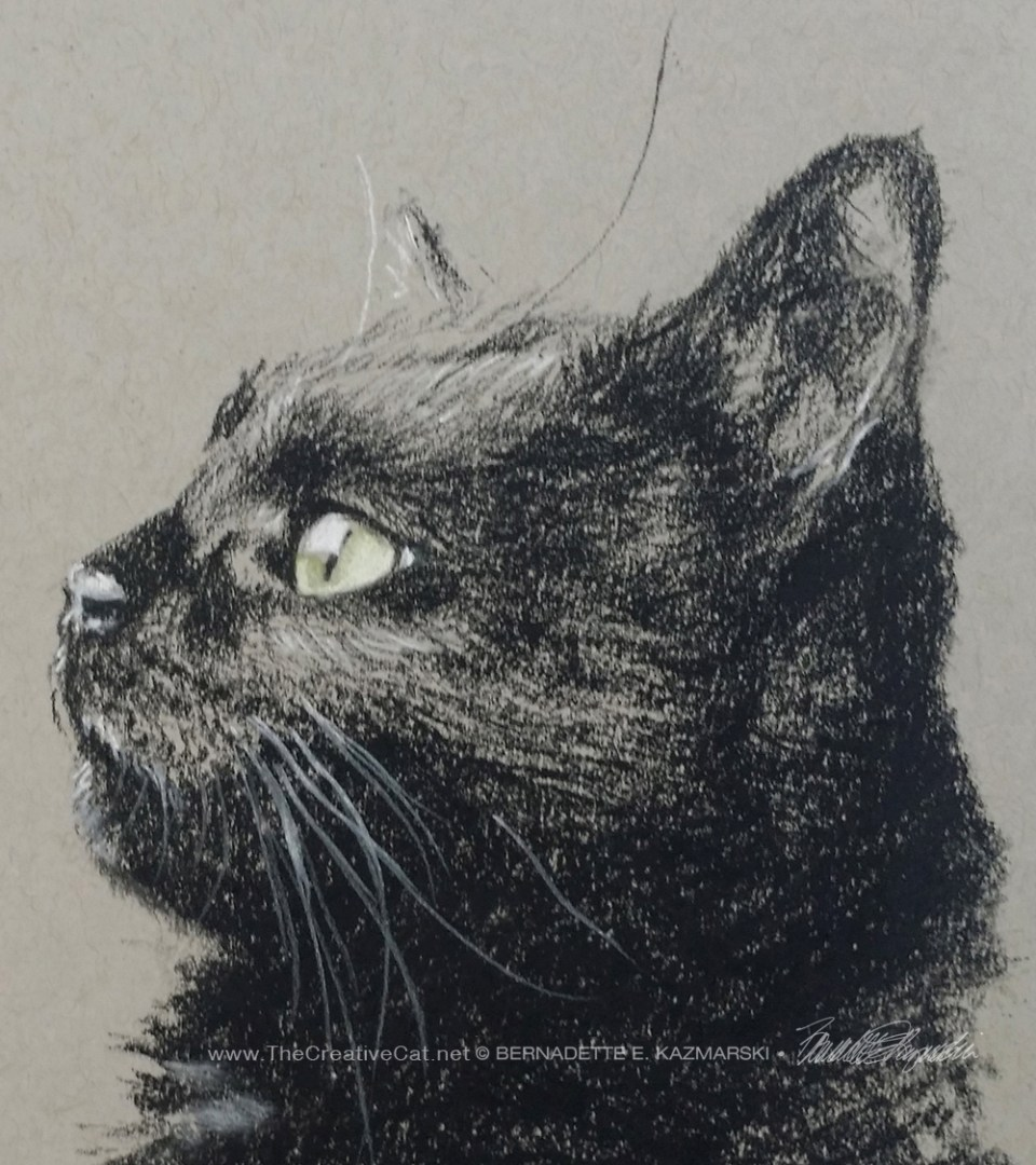 charcoal sketch of black cat