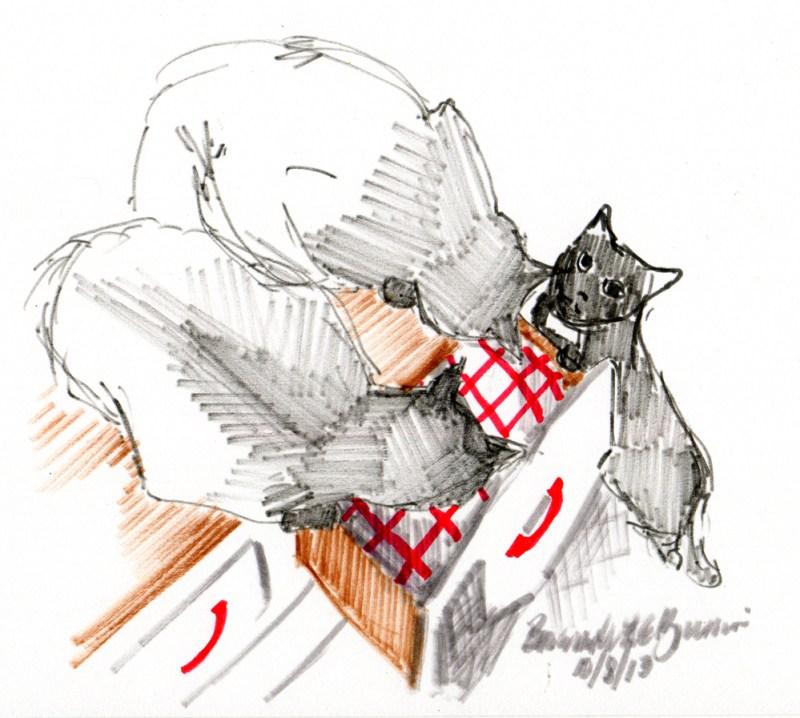 marker sketch of three cats