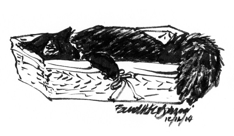 brush pen sketch of kitten in basket