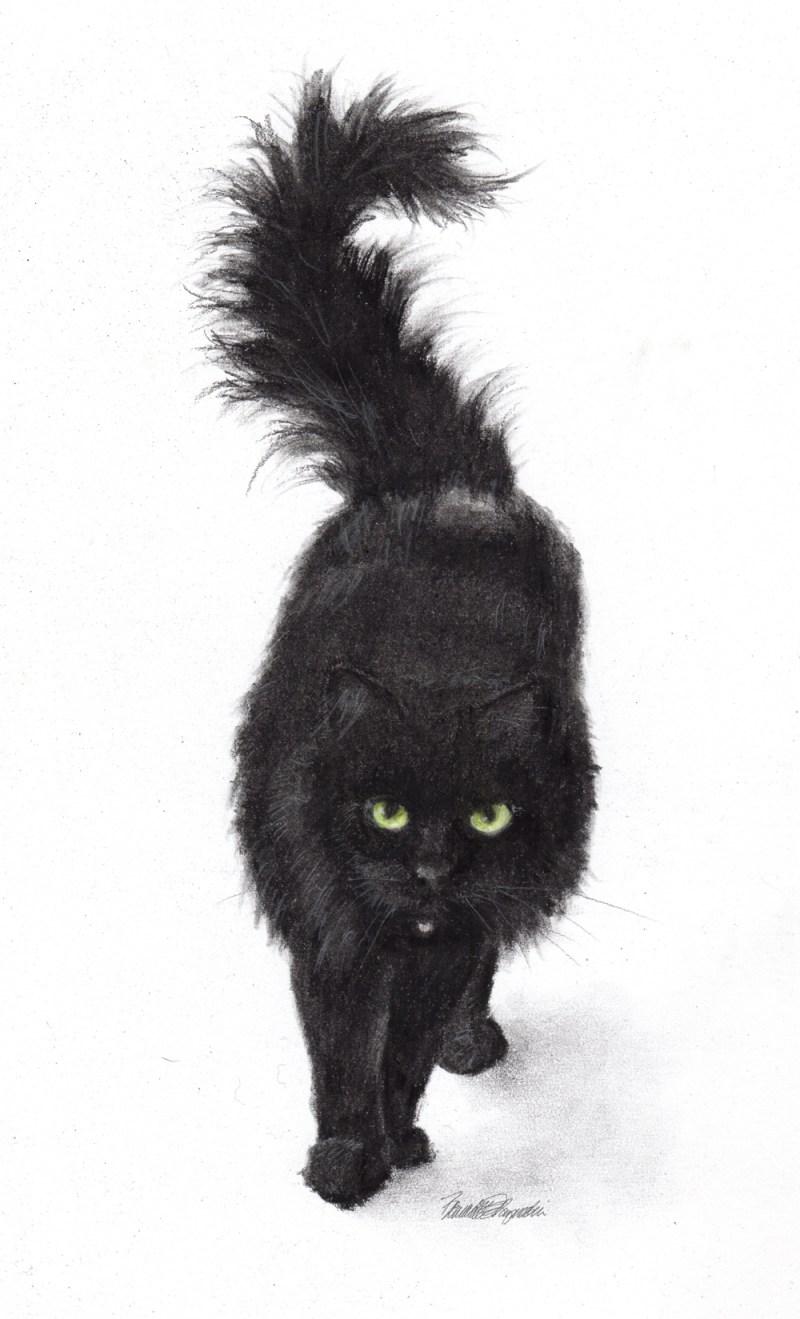 """Bear"", charcoal pencils, 8"" x 10"", 2014 © Bernadette E. Kazmarski"