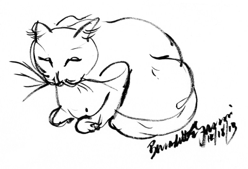 brush drawing of cat
