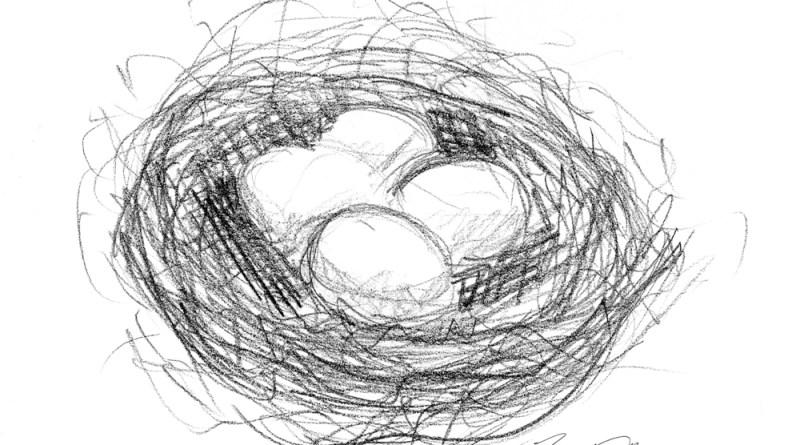 """My Nest Eggs"", pencil, 6″ x 6″, 2002 © Bernadette E. Kazmarski"