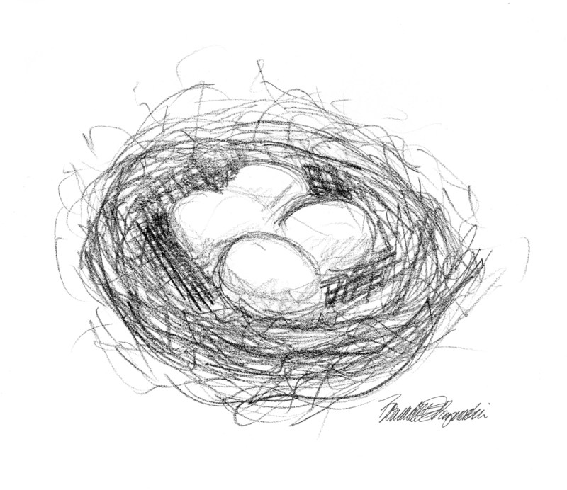 """My Nest Eggs"", pencil, 6″ x 6″, 2002 © Bernadette E. Kazmarski"