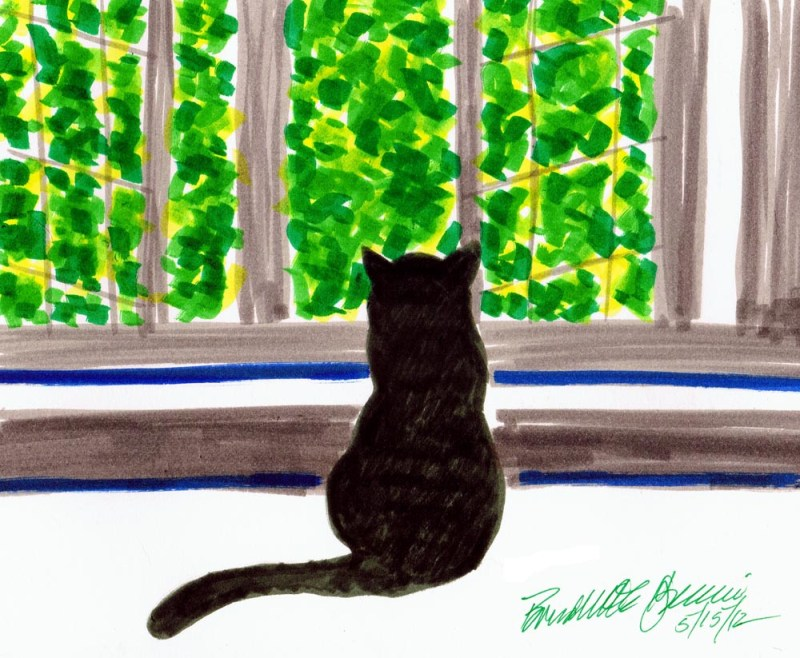 marker sketch of cat looking out window