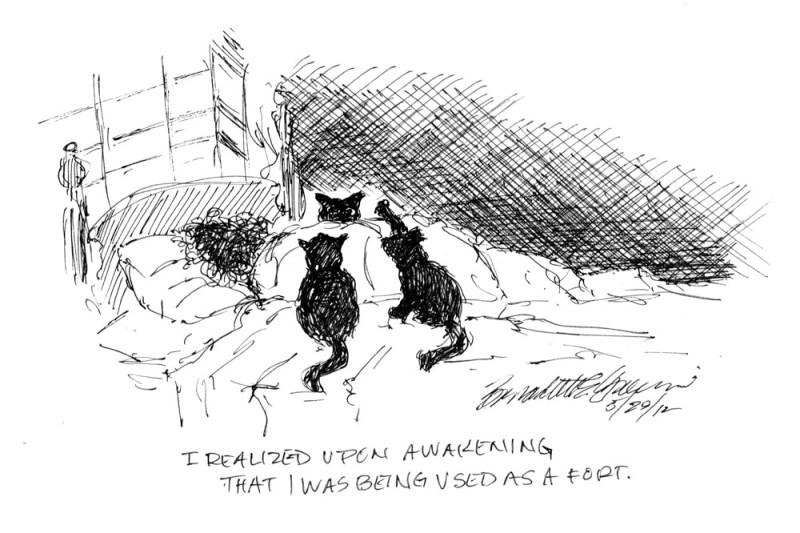 cartoon of cats and woman sleeping