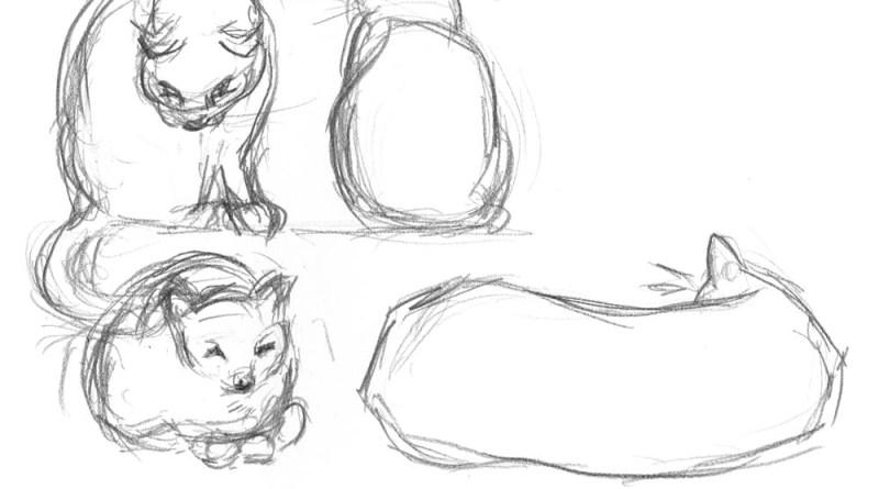 pencil studies of cats