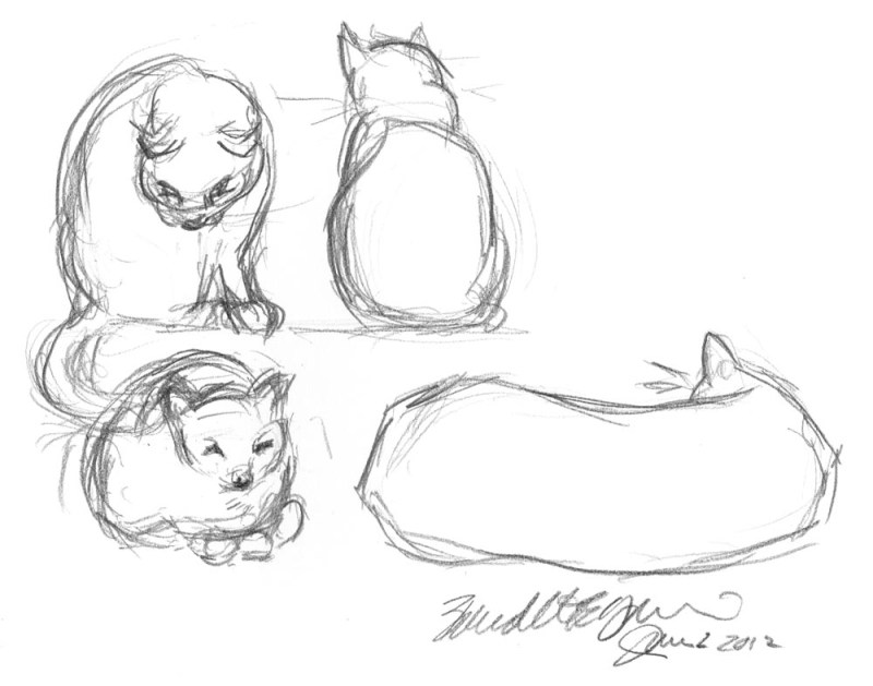 pencil studies of cats