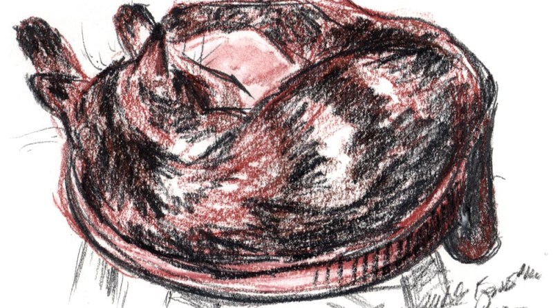 sketch of tortoiseshell cat on stool