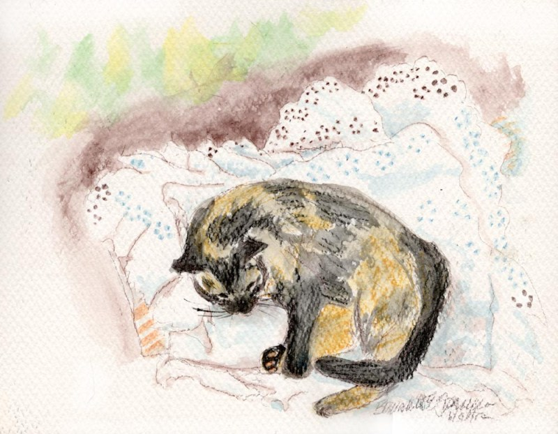 paitning of tortoiseshell cat napping on eyelet pillowcase