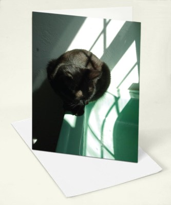 sample of card with black cat on green sink