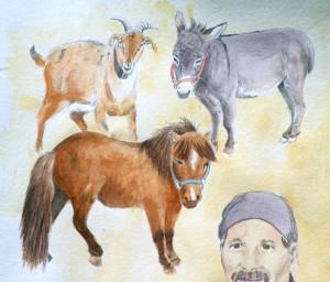 pencil and watercolor sketch of barn animals