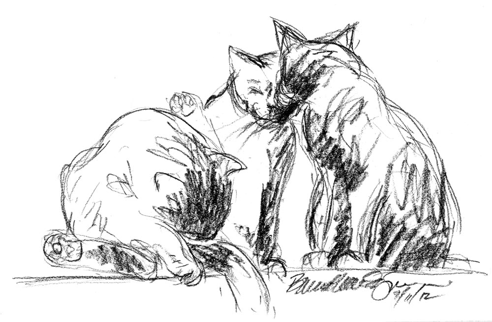 Daily Sketch Reprise: Three Busy Kitties