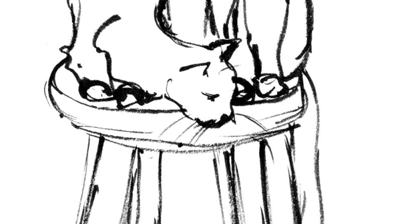 ink sketch of cats on stool
