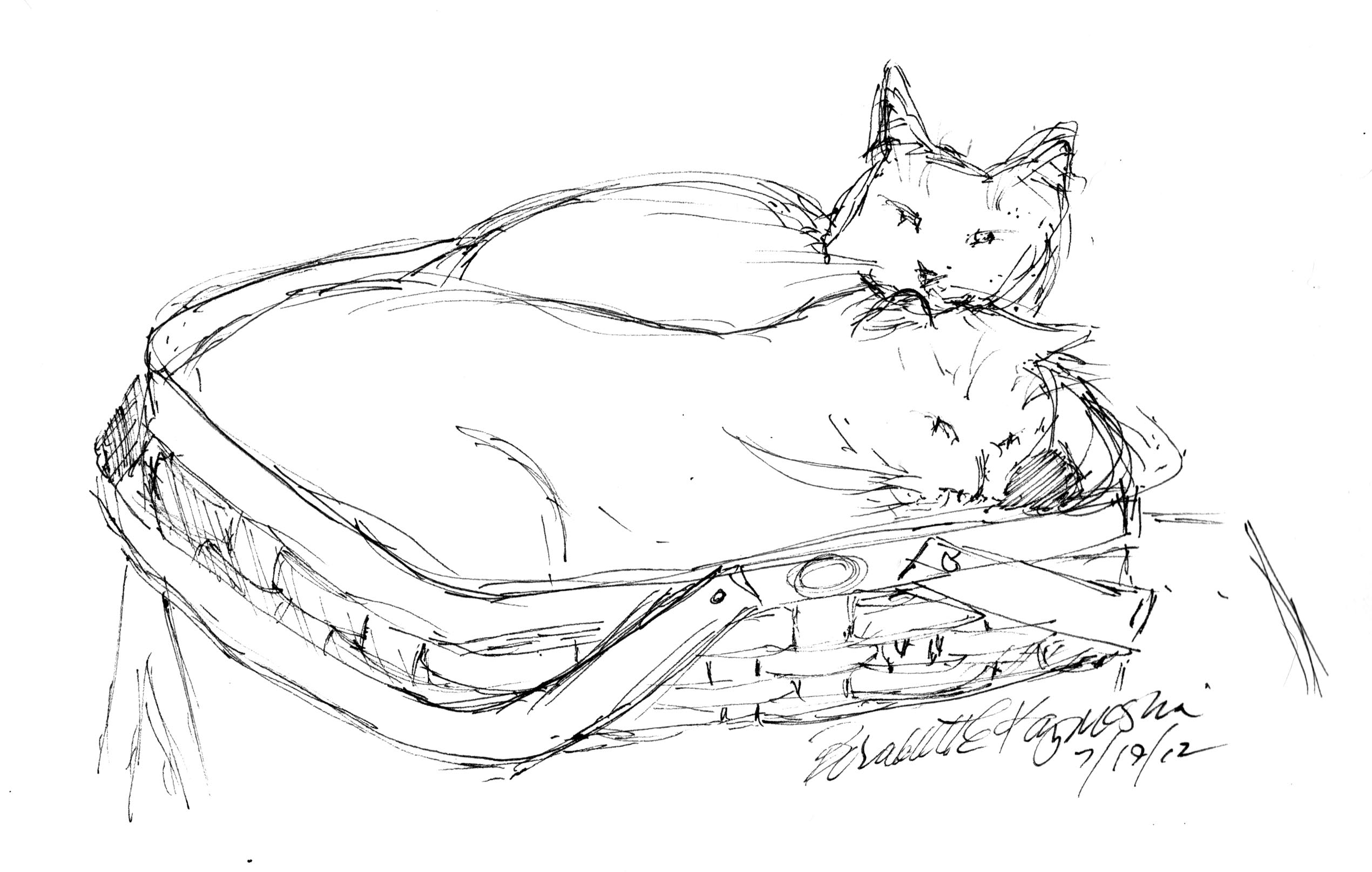 Daily Sketch Reprise: Two Cats in a Basket, the Sketch, 2012