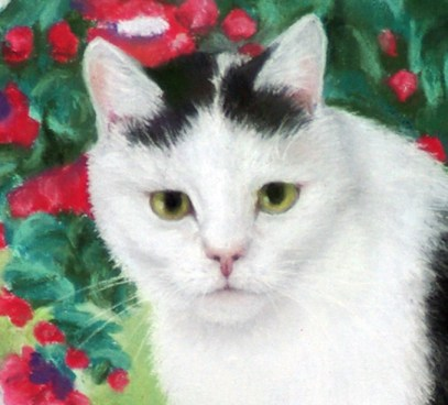 detail of portrait of cat