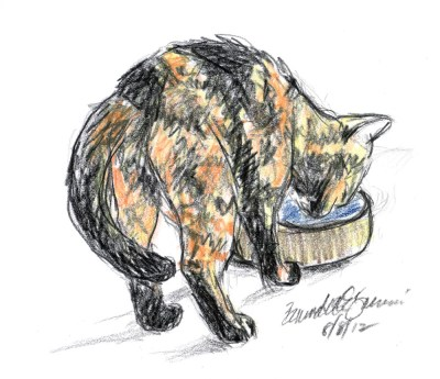 sketch of cat drinking water