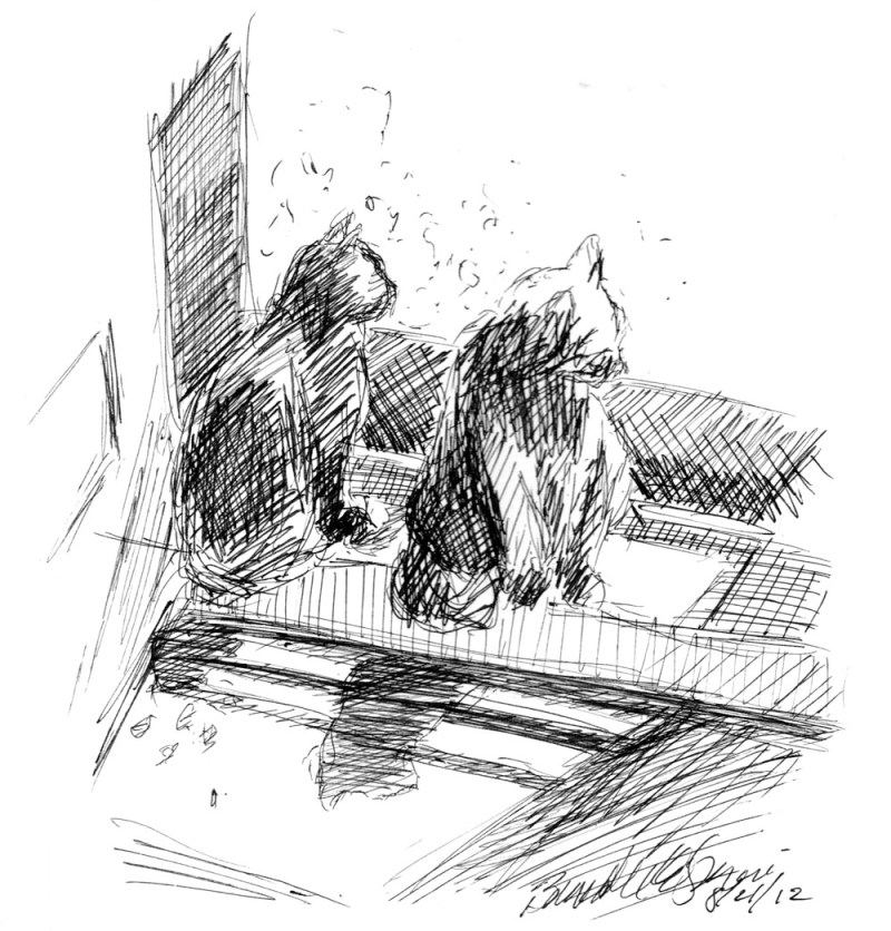 ink sketch of two cats looking out door