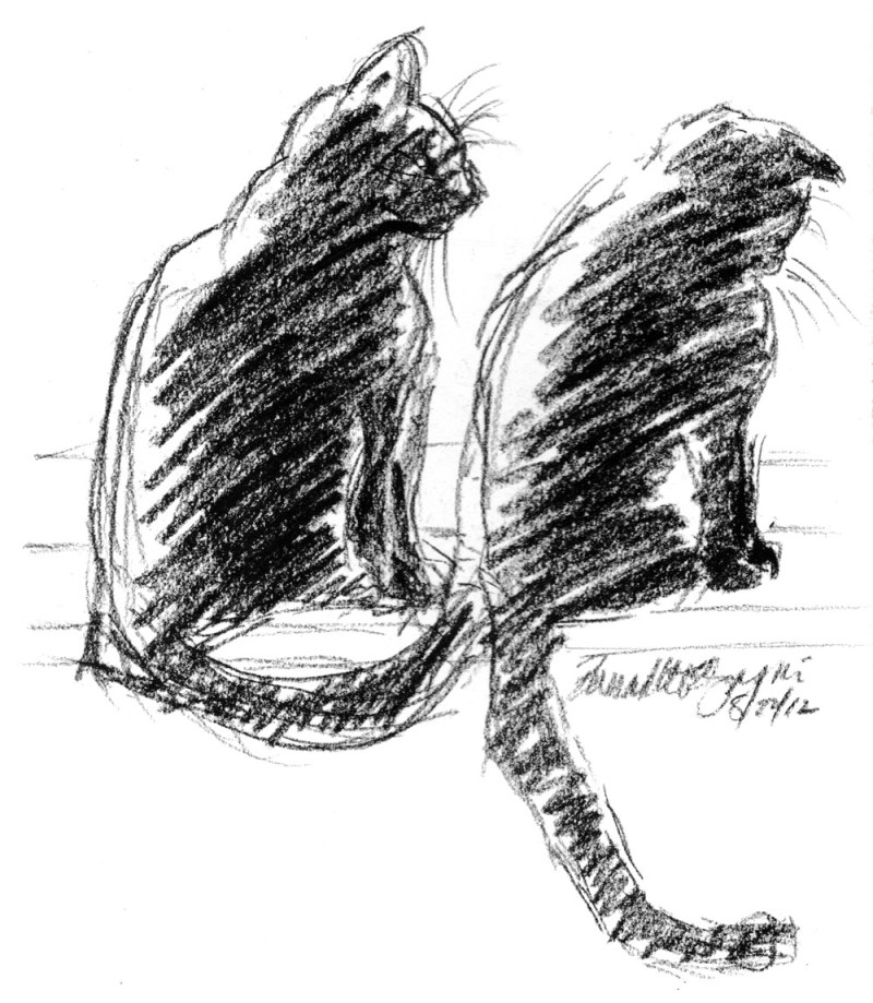 charcoal sketch of two cats on sunny windowsill