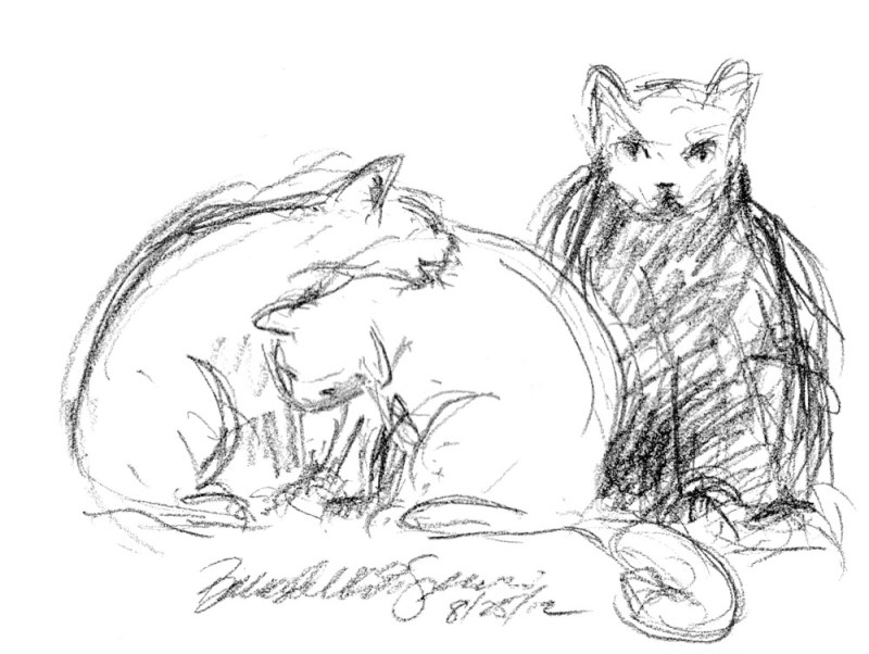 charcoal sketch of three cats