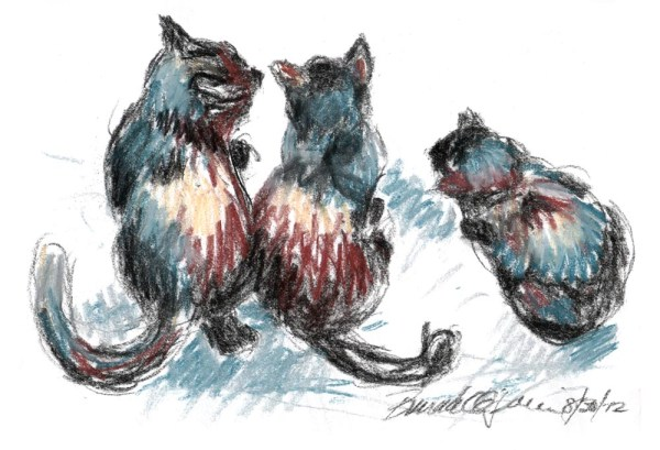 pastel sketch of three cats looking out door