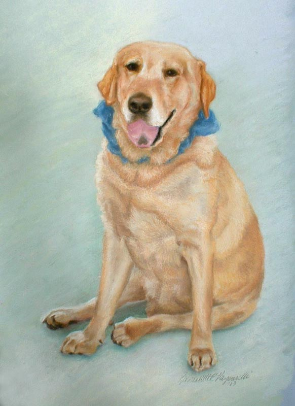 portrait of yellow lab