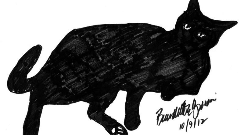 silhouette of black cat