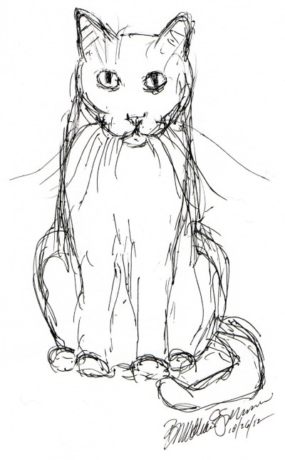 ink sketch of cat staring