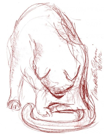 conte sketch of cat bathing