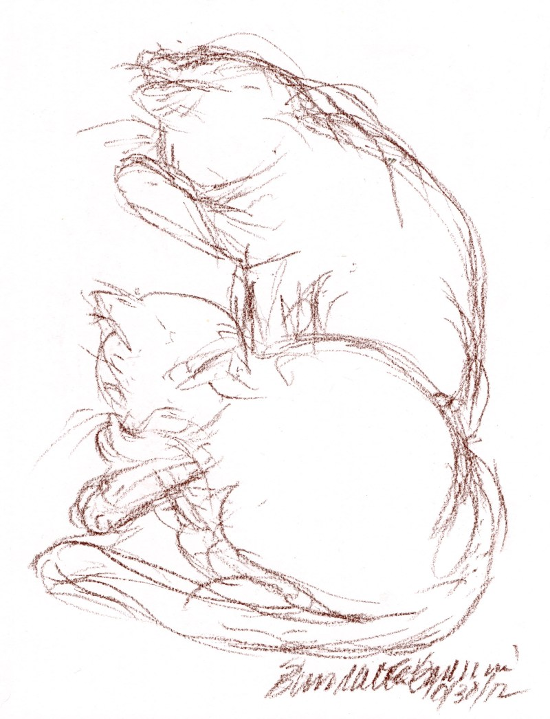 conte sketch of two cats
