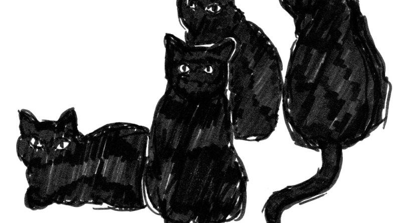 ink sketch of four black cats