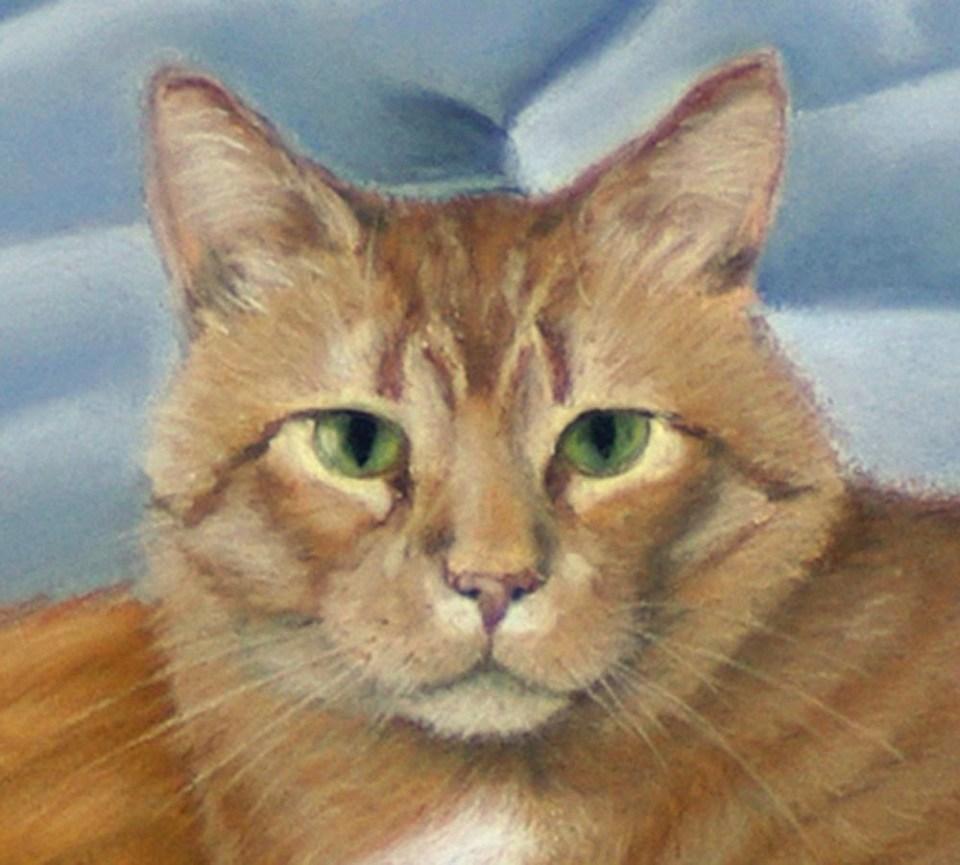 pastel portrait of orange cat