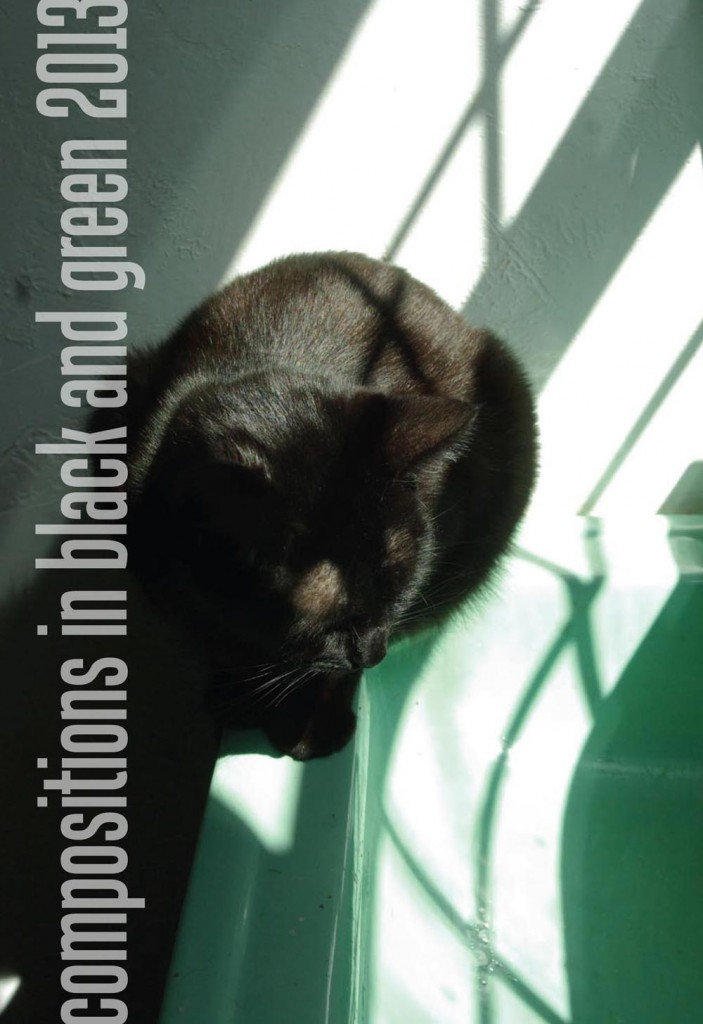 calendar cover with black cat