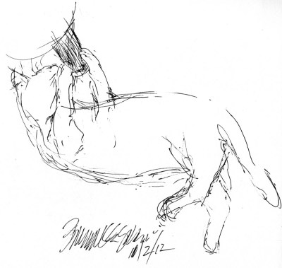 ink sketch of cat playing