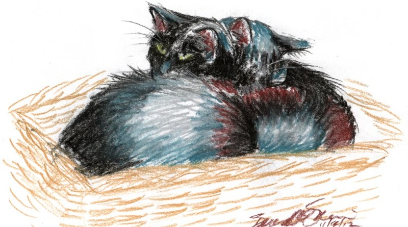 pastel sketch of two cats in a basket