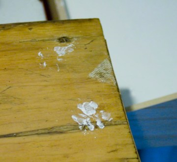 closeup of white pawprints on wood