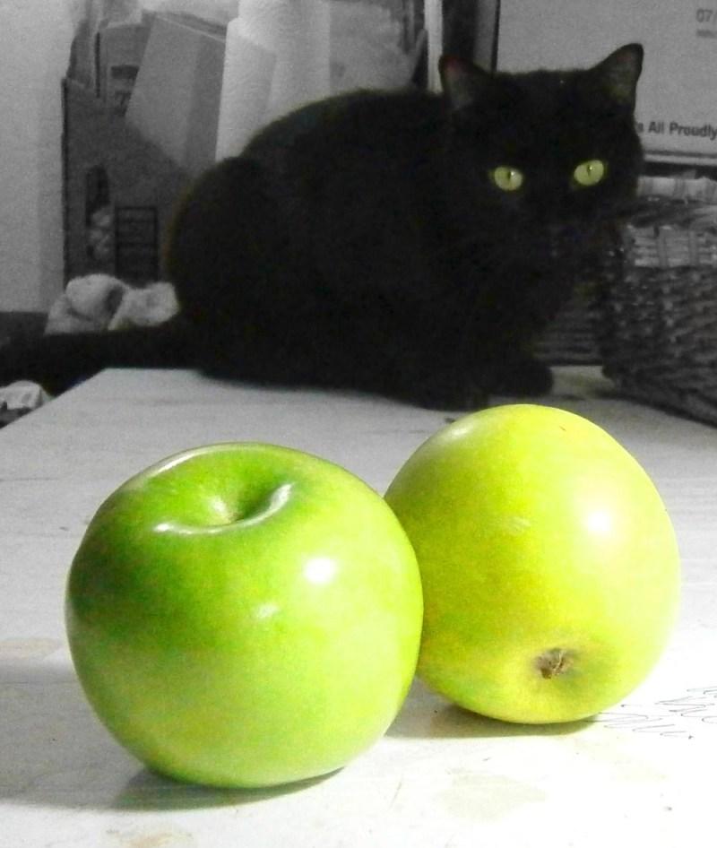 black cat looking at green apples
