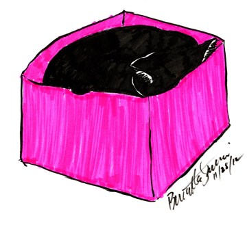 marker sketch of cat in box