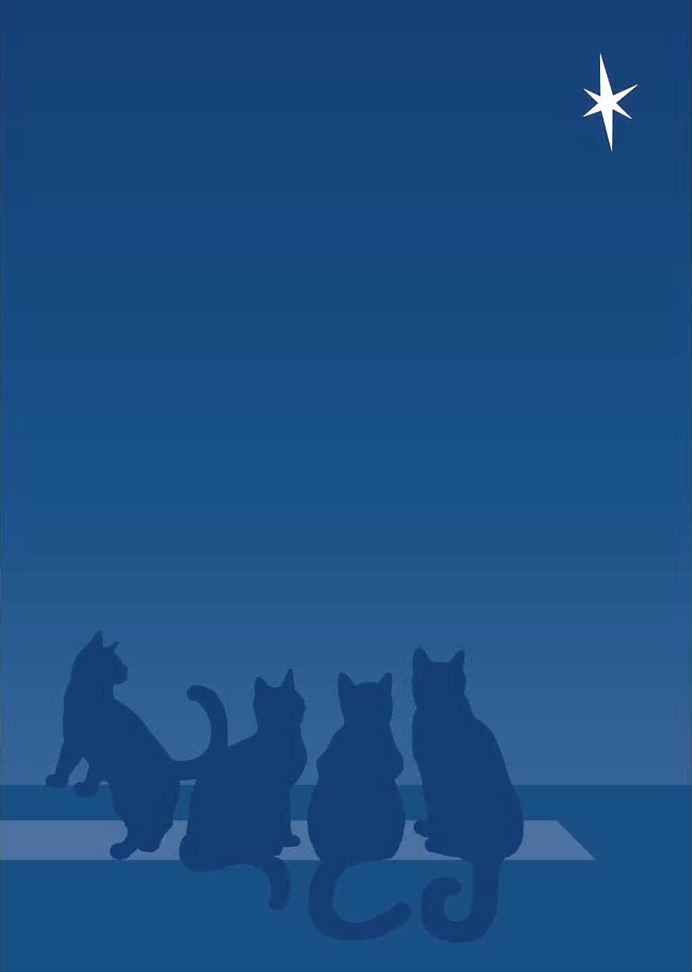 holiday card featuring kittens looking at star