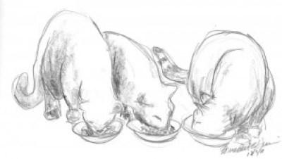 """Dinnertime!"", pencil © BernadetteE. Kazmarski"