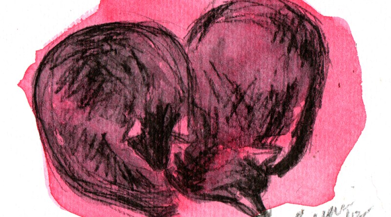 watercolor of two cats on a red blanket