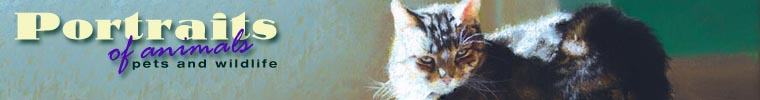 Inspired by felines you know! Visit Portraits of Animals!