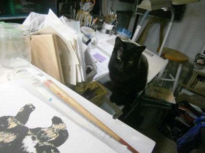black cat watching art