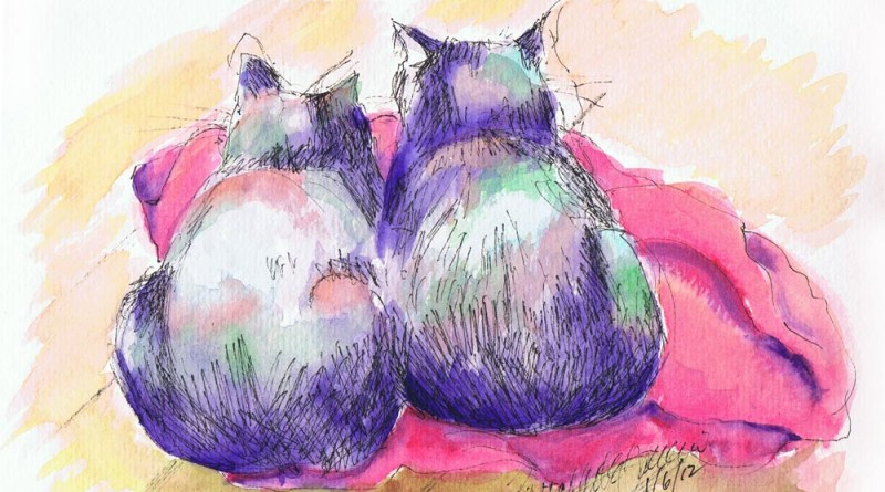 two cats on red blanket