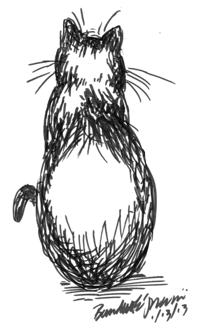 marker sketch of cat