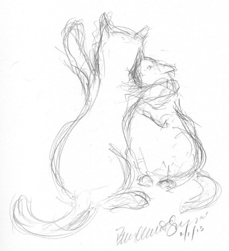pencil sketch of two cats wrestling