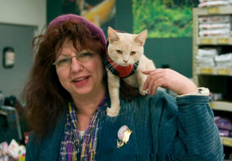 person and orange cat
