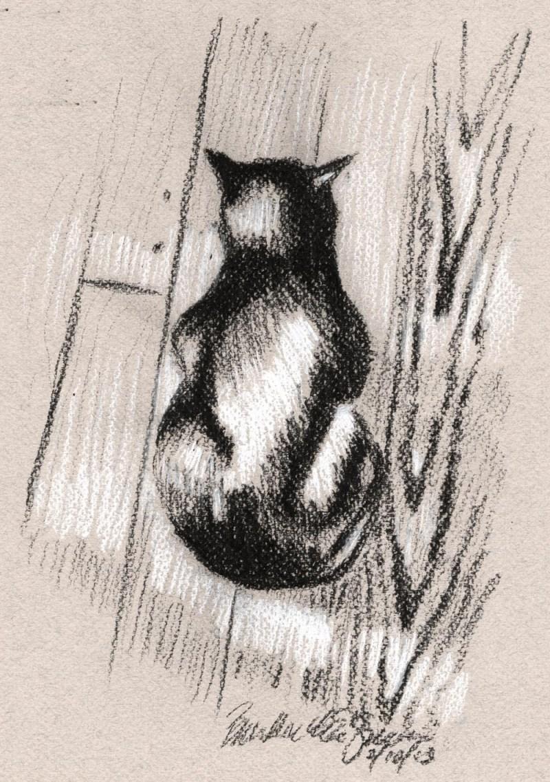 sketch of black cat on floor